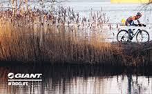 bikes-4-fun-giant-mountainbike-3